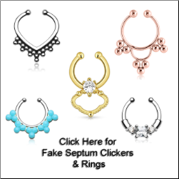 Fake Septum Clickers & Rings