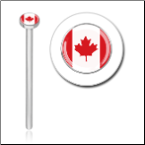 316L Surgical Steel 2mm Canada Flag Nose Stud Ring Choose Your Style 20G