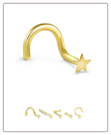 14K Solid Yellow Gold Nose Stud 2mm Star- Choose Your Style