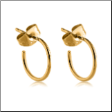 Gold PVD Coated 316L Surgical Steel Hoop Earrings