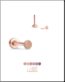 Rose Gold Plated 316 Stainless Steel Labret Style Nose Stud Threadless Push Pin Skin Tone 20G 18G 16G