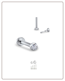 Titanium Labret Style Push Pin Nose Stud, Surgical Steel Insert-Choose Your Size 18G