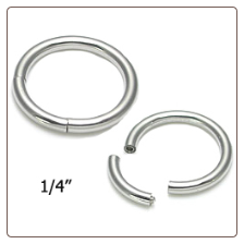 "Segment Nose Ring Hoop Surgical Steel 1/4"" 18 Gauge"