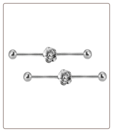 **BLOW OUT SALE** 2 PACK Ear Cartilage Industrial Scaffold Barbell Rose 14G