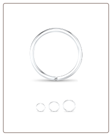 14KT White Gold Seamless Nose Ring